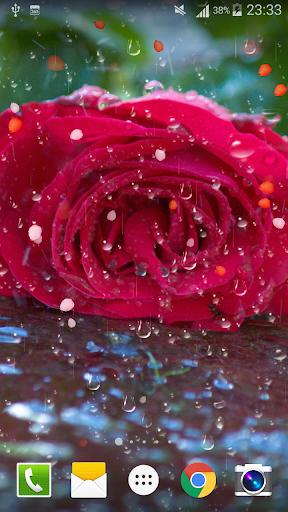 Rose Raindrop Live Wallpaper  screenshots 6