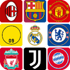 Guess the Football Logo icon