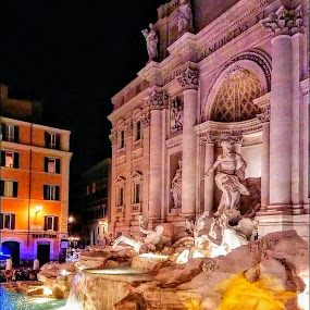 trevi by Stephen Lang - Buildings & Architecture Public & Historical