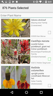 New Mexico Wildflowers- screenshot thumbnail