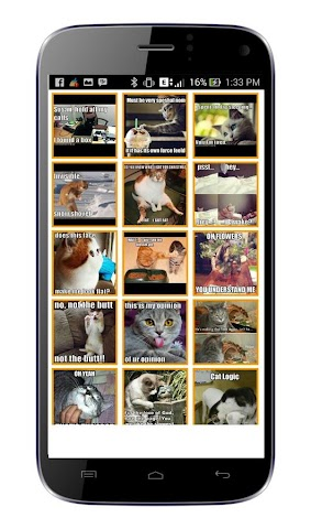 android Cat Meme Picture Screenshot 0