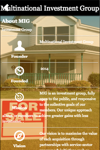 Multinational Investment Group