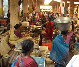Photo: Fish Market Pondicherry Tamil Nadu