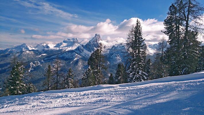 Cortina Pocol di Pinco_Pallino