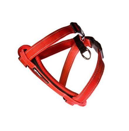 Bil/promenadsele röd XS 27-46 29-48 cm 3-6 kg