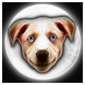 Fortune Teller Crystal Ball LT icon