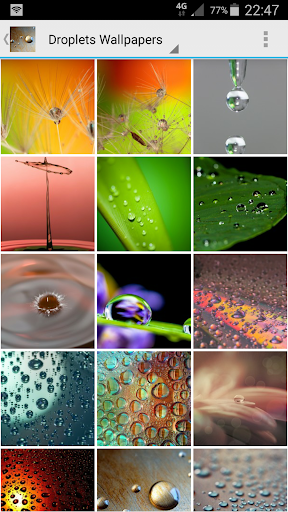 Droplets Wallpapers