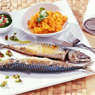 Makrele mit Möhrenpüree und Kräuter-Radieschen-Dressing