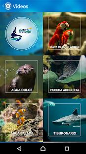 Acuario Veracruz - náhled