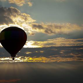 Evening Balloon by Bill  Brokaw - Transportation Other ( hot air balloon, sunset, brokaw )