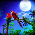 Parrot Wallpaper Best 4K APK