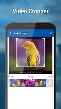 Video Crop