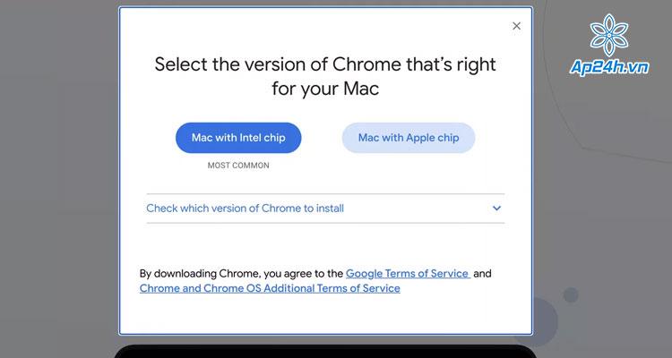 Ra mat Google Chrome cho MacBook 2020