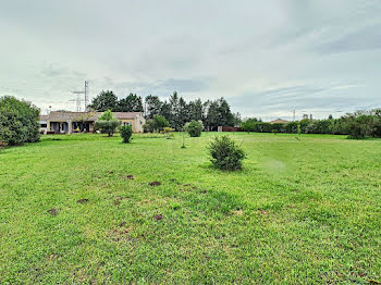 maison à Cheval-Blanc (84)