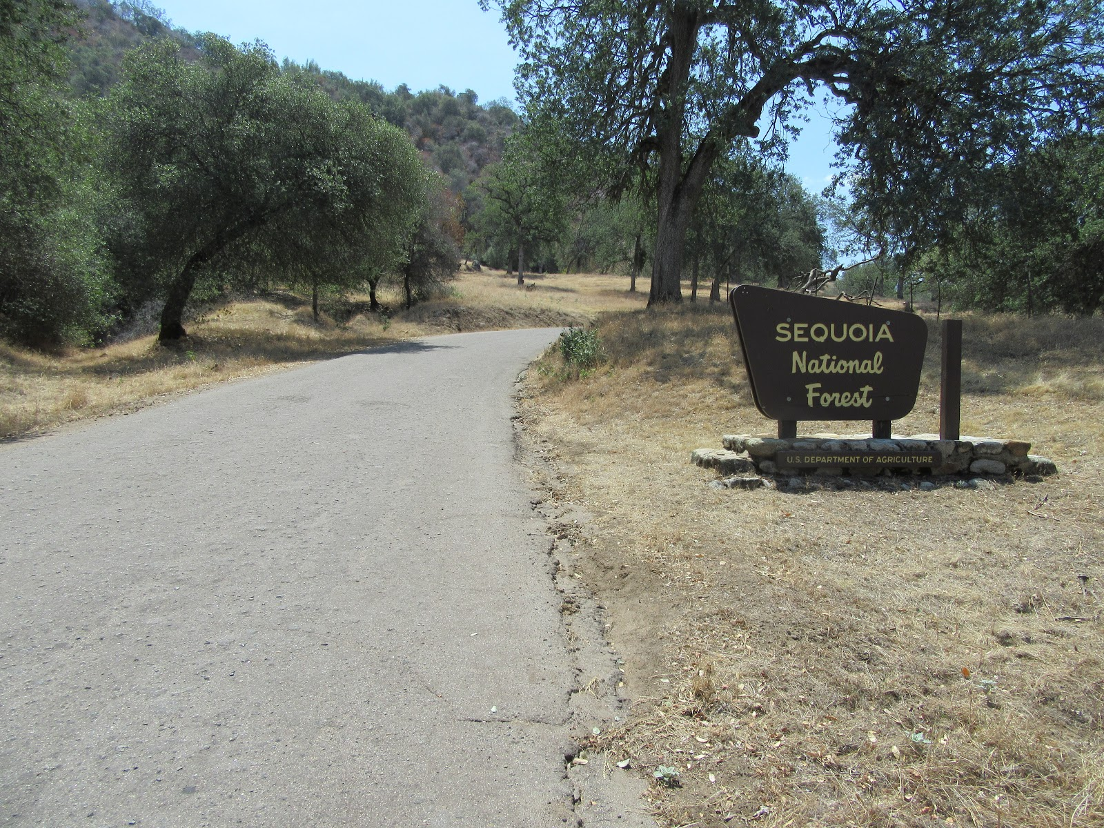 Climb  Bear Creek Road by bike - sign for Sequoia National Forest