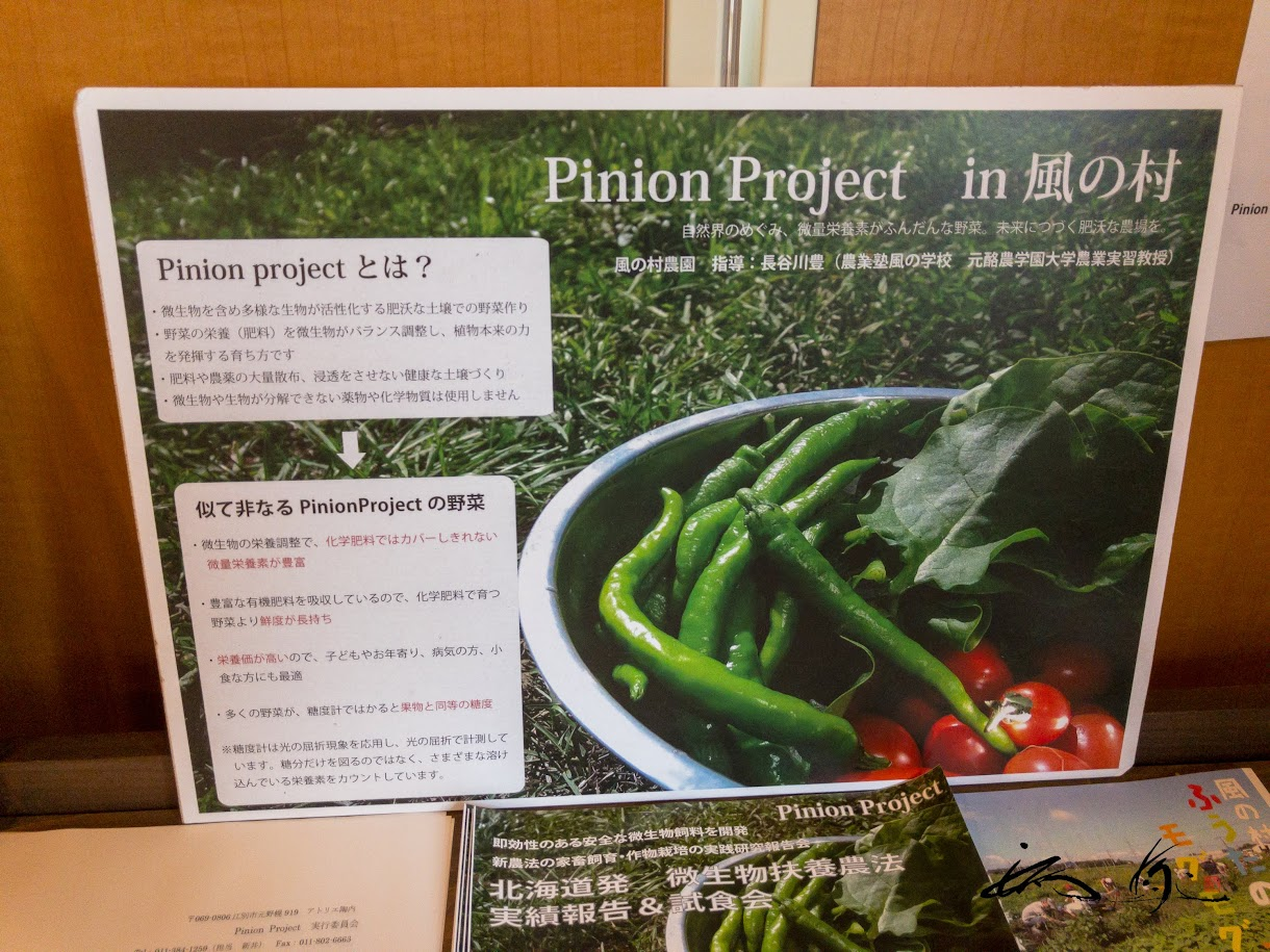 Pinion project in 風の村