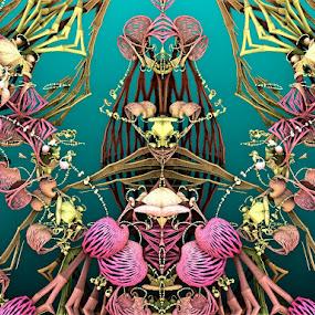 Féminity by Linda Czerwinski-Scott - Illustration Abstract & Patterns ( patterns, abstract art, illustration, fractals )
