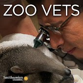 Zoo Vets