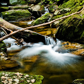 Simplicity by Alfred Encallado - Landscapes Waterscapes ( water, smooth, silky, cascade, simple, green, waterfall, forest )