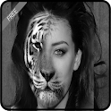 InstaFace Changer (Morphing) icon