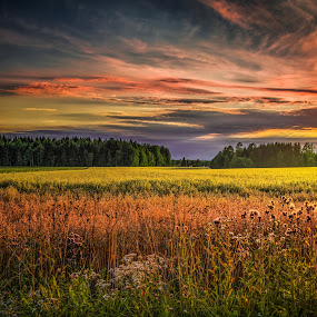 Askim, Norway 152 by IP Maesstro - Landscapes Mountains & Hills ( clouds, hdr, grass, reflections, forest, landscape, sun, norway, field, sky, ip maesstro, sunset, sunrise, askim )