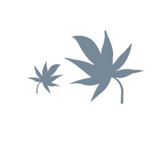 emblem_AUTUMN BATTLE2017