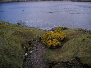 Photo: Along the shore of Killary Harbour