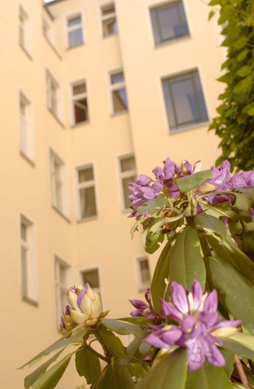 Old Town Apartments Schönhauser Allee