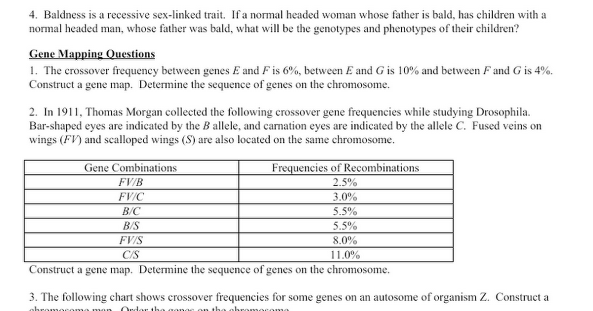 Linked Genes Google Docs – Sex Linked Traits Worksheet