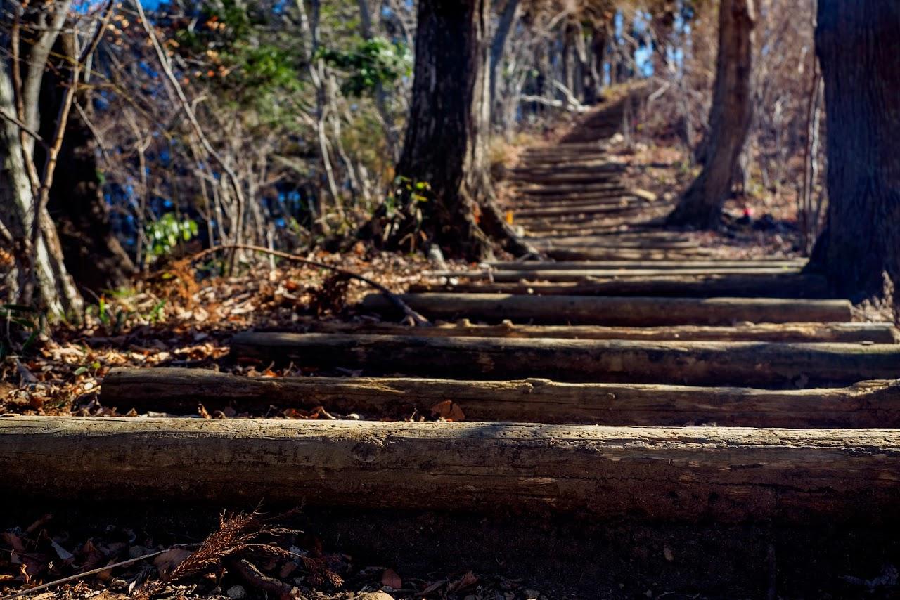 山頂手前にいい感じの階段