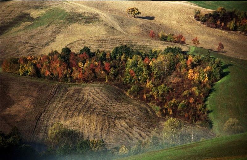 I campi in autunno di paolo-spagg