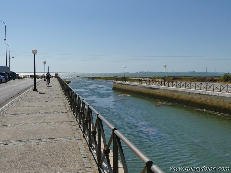 Bici Cádiz - Puerto de Santa María - Puerto Real - San Fernando - Cádiz