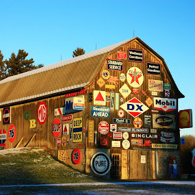 Signs Signs Everywhere Signs by Reva Fuhrman - Artistic Objects Signs ( antique signs barn rural metal wood colorful unique collection,  )