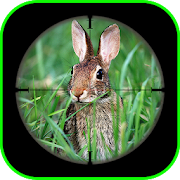 Rabbit Sniper Hunting : Shooting Challenge Games APK for Bluestacks