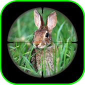 Rabbit Sniper Hunting : Shooting Challenge Games
