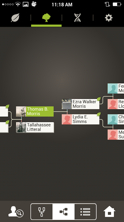 Ancestry - screenshot