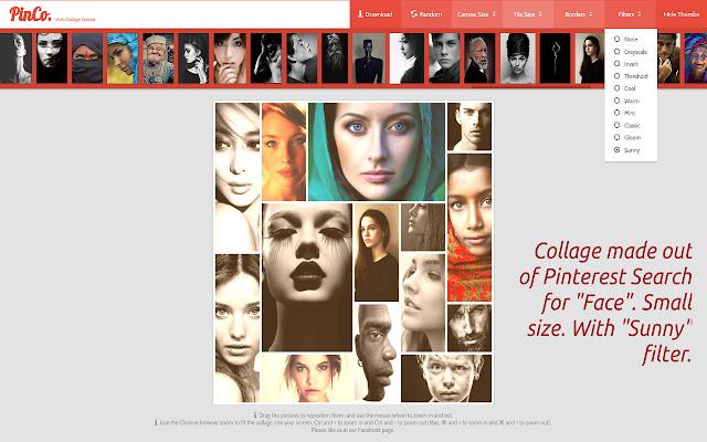 PinCo Collage Maker for Websites PRO