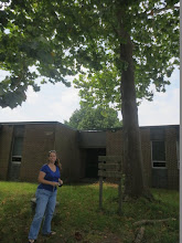 Photo: Angela with the Sycamore Moon Tree on her home turf :)