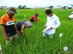 Photo: Data collection - CFPAR for Kampong Speu province farmers , Lvea Village, Ang Popel commune, Korng Pisey district, Kampong speu province (10-12 Sep 2014)