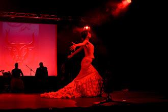 Photo: Carmen idzie na śmierć -Małgorzata Matuszewska
