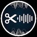 jetAudio HD Music Player Plus 9 6 1 (Mod Silver Design) (Arm