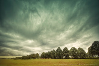 Photo: Face in the clouds