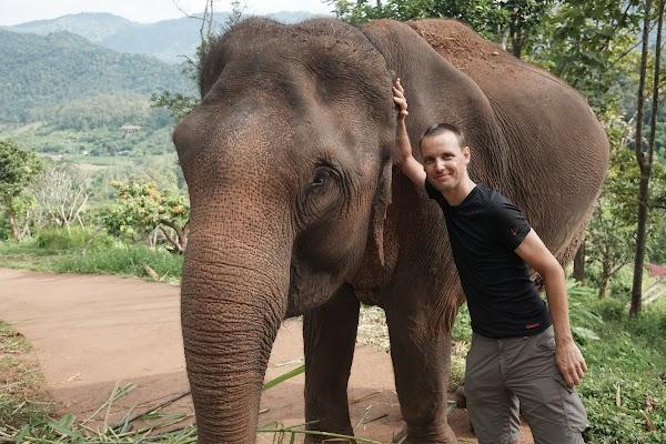 Patara Elephant Farm bei Chiang Mai