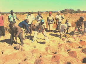Photo: Submitted by GOAL  Farmers in Makoni District in Manicaland Province, Zimbabwe demonstrating how to make planting basins with hoes and shovels as part of their training in the application of conservation techniques.