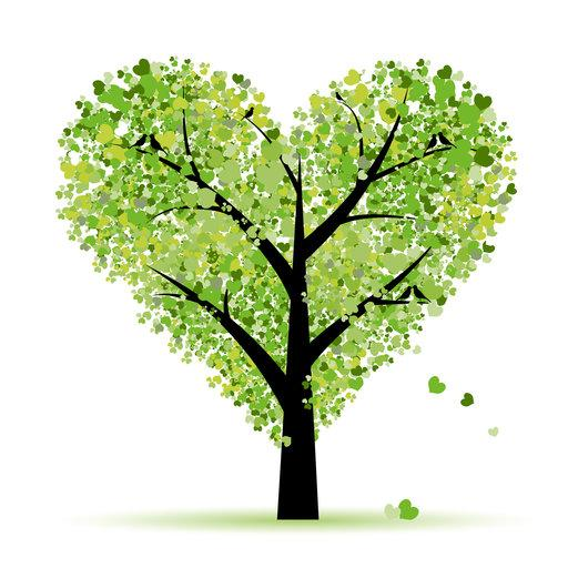 Green Wedding Planner
