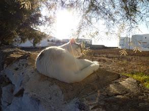 Photo: Folegandros
