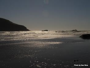 Photo: (Year 2) Day 357 - Harris Beach #3
