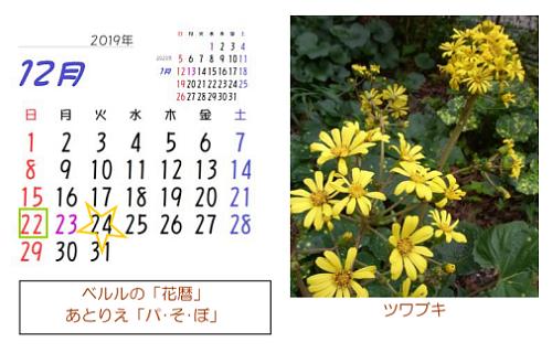 12月の花暦