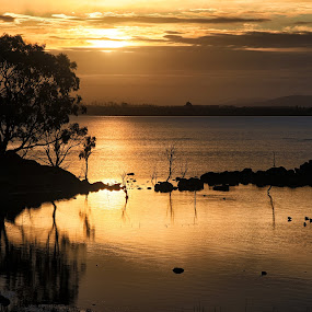 Burrumbeet Sunrise by Susan Marshall - Landscapes Sunsets & Sunrises ( orange, reflection, lake, sunrise, sun,  )