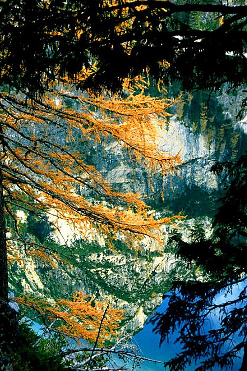 Riflessi autunnali nel lago di Braies di lucaldera